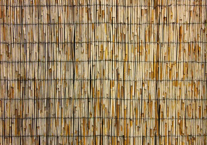 Fundo do feno ou da grama seca Cobrir com sapê o telhado para o fundo, a palha secada ou o bastão fotografia de stock royalty free