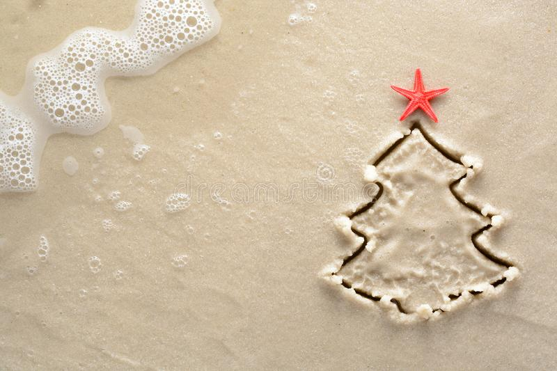 Fundo do feriado - árvore de Natal com a estrela do mar tirada em um Sandy Beach imagem de stock royalty free
