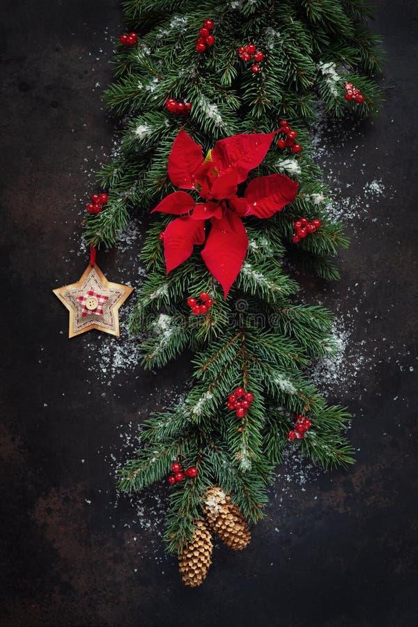 Fundo do feriado do Natal com ramos de árvore do abeto, cones imagem de stock royalty free