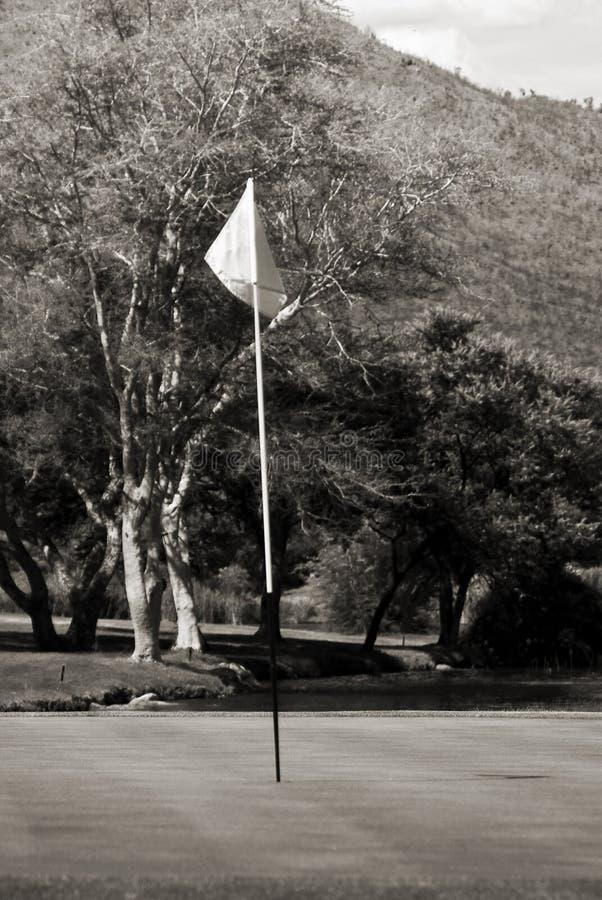 Fundo do Flagpole, o verde & o ocupado fotografia de stock