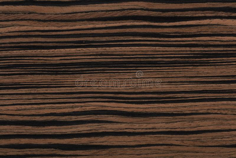 Fundo do folheado ebony estiloso com cores únicas em tons castanhos Textura de madeira de alta qualidade fotografia de stock