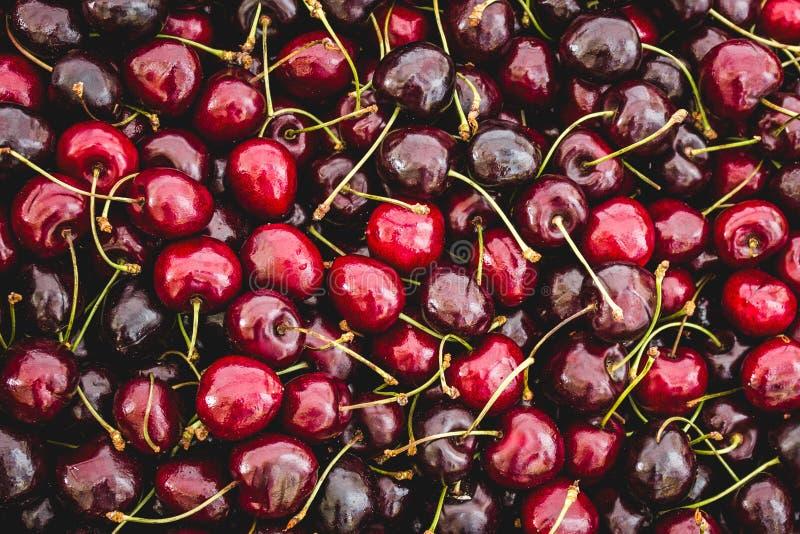 Fundo do fruto da cereja - close up de muitas cerejas imagem de stock royalty free