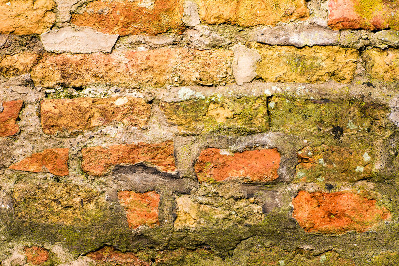 Fundo do Grunge com uma parede dos tijolos foto de stock royalty free