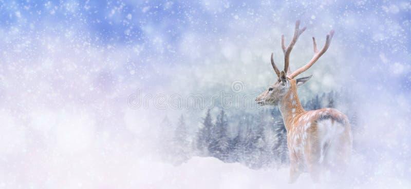 Fundo do inverno com cervos ilustração stock