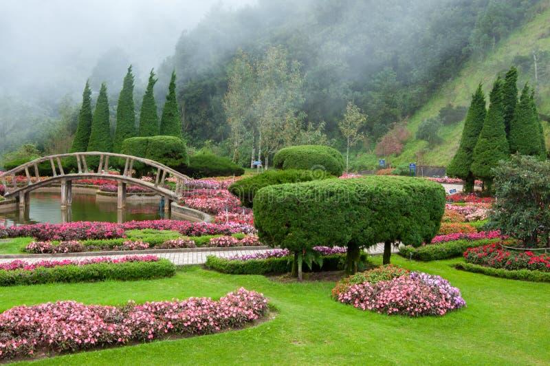Fundo do jardim e da névoa imagens de stock