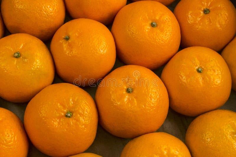 Fundo do mandarino Citrino no close-up da mentira da casca próximos um do outro Uma boa colheita de colheitas das tangerinas imagens de stock royalty free