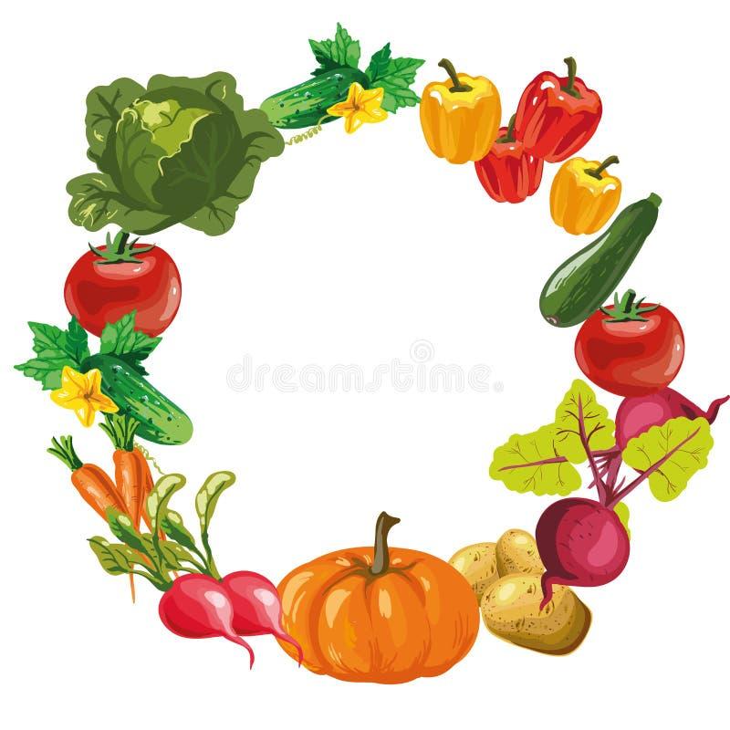 Fundo do menu do alimento de Eco Vegetais desenhados mão Ilustração do vetor ilustração stock