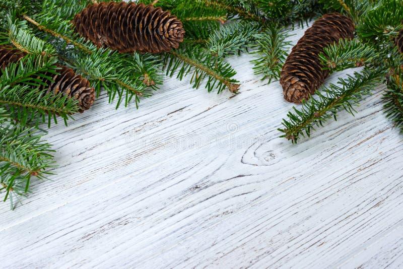 Fundo do Natal Cones do pinho do ramo de árvore do abeto na tabela de madeira Configuração lisa, espaço para o texto imagens de stock