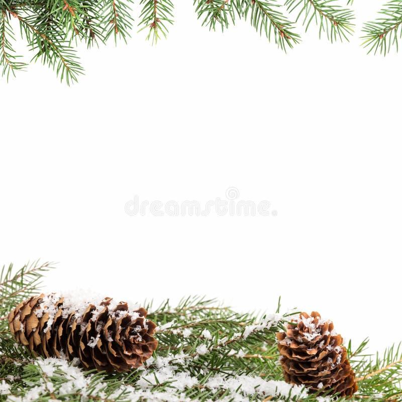 Fundo do ornamento do Natal com ramos do abeto imagens de stock royalty free