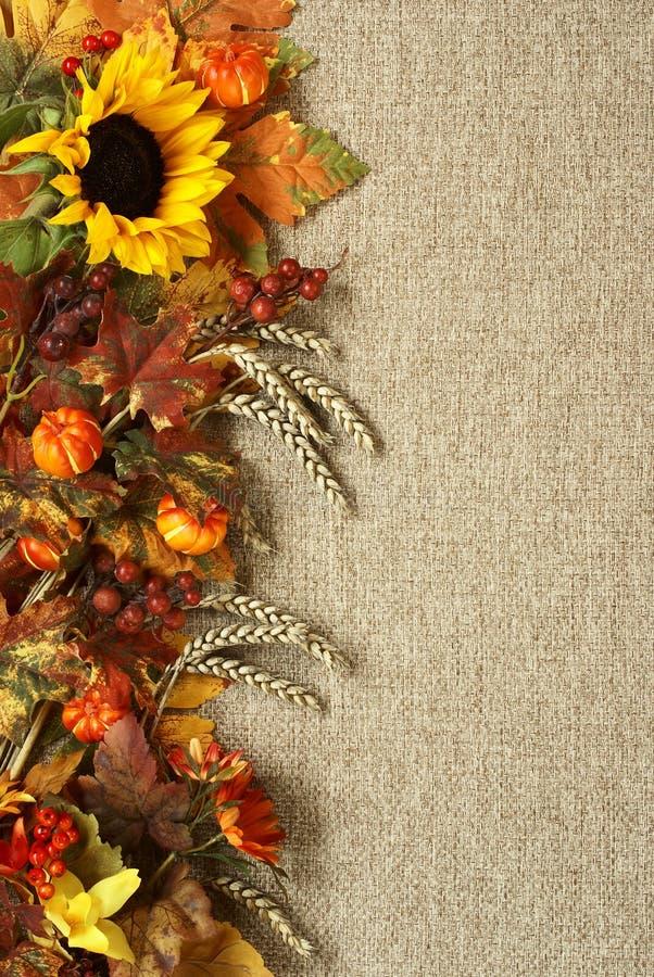 Fundo do outono fotografia de stock