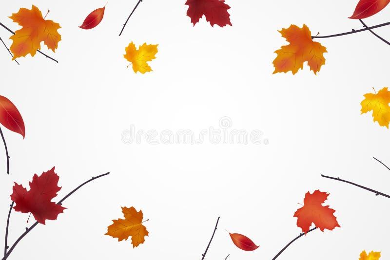 Fundo do outono com as folhas coloridas brilhantes Composição do outono Verão indiano Quadro feito dos ramos com queda ilustração royalty free