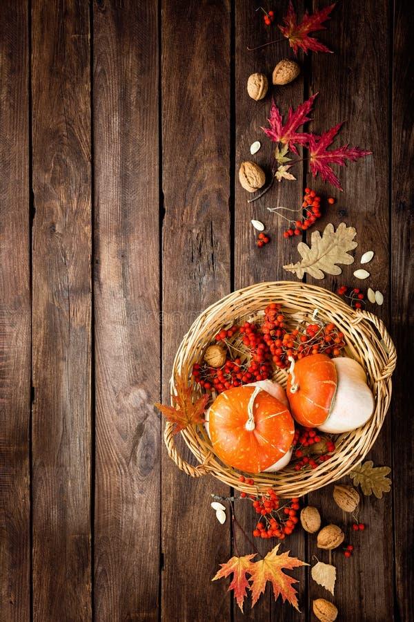 Fundo do outono com folhas e abóboras, ação de graças e cartão do Dia das Bruxas foto de stock royalty free