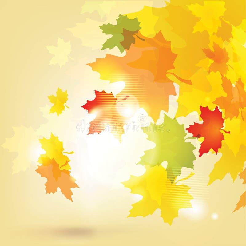 Fundo do outono com folhas e sol ilustração do vetor