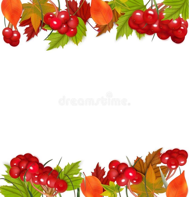 Fundo do outono com Viburnum e as folhas coloridas imagens de stock royalty free