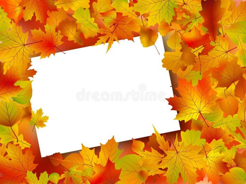 Fundo do outono da queda da acção de graças