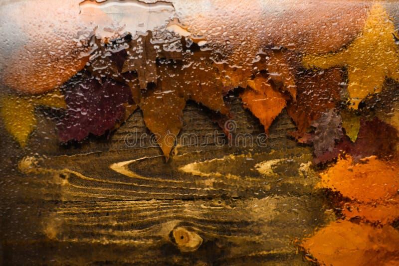 Fundo do outono, vista através do vidro molhado na madeira e folhas caídas Gotas da água ou da chuva no vidro transparente e imagem de stock