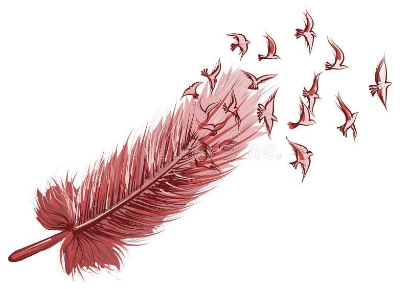 Fundo do pássaro da pena ilustração royalty free