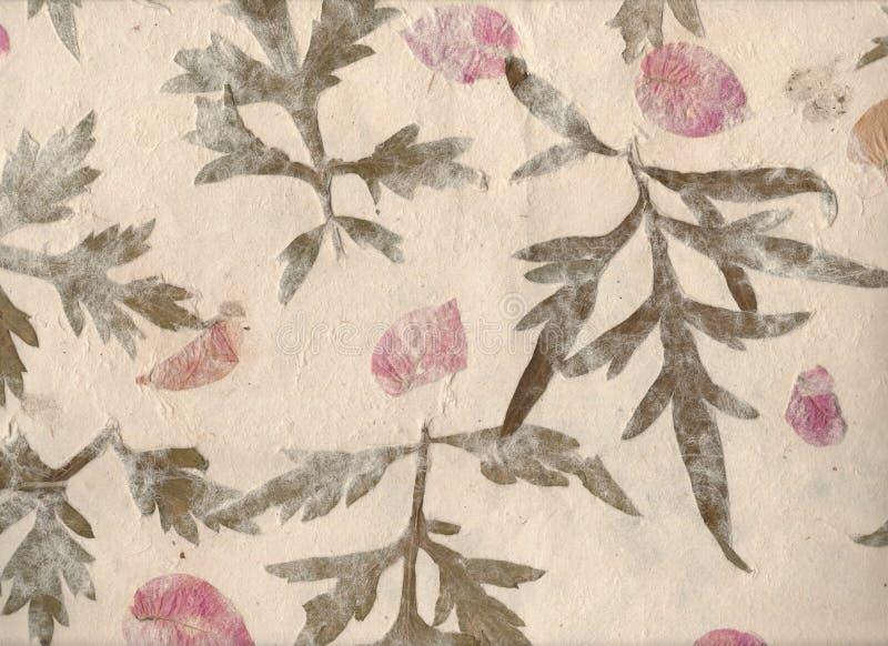 Fundo do papel feito à mão com texturas e silhuetas da planta Fundo de papel sujo velho Folha feito à mão do papel da flor imagens de stock royalty free