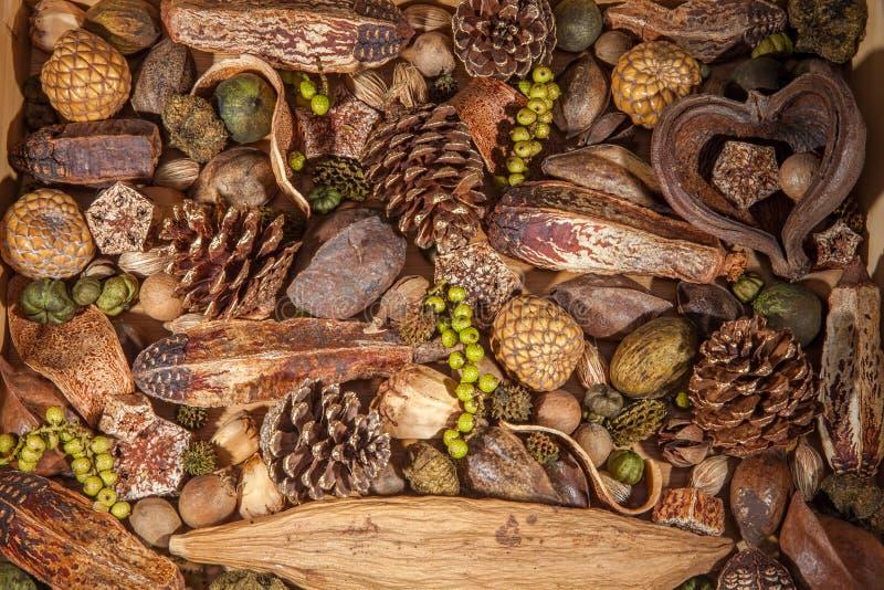 Fundo do pot-pourri do Natal Decoração tradicional do pineco imagens de stock