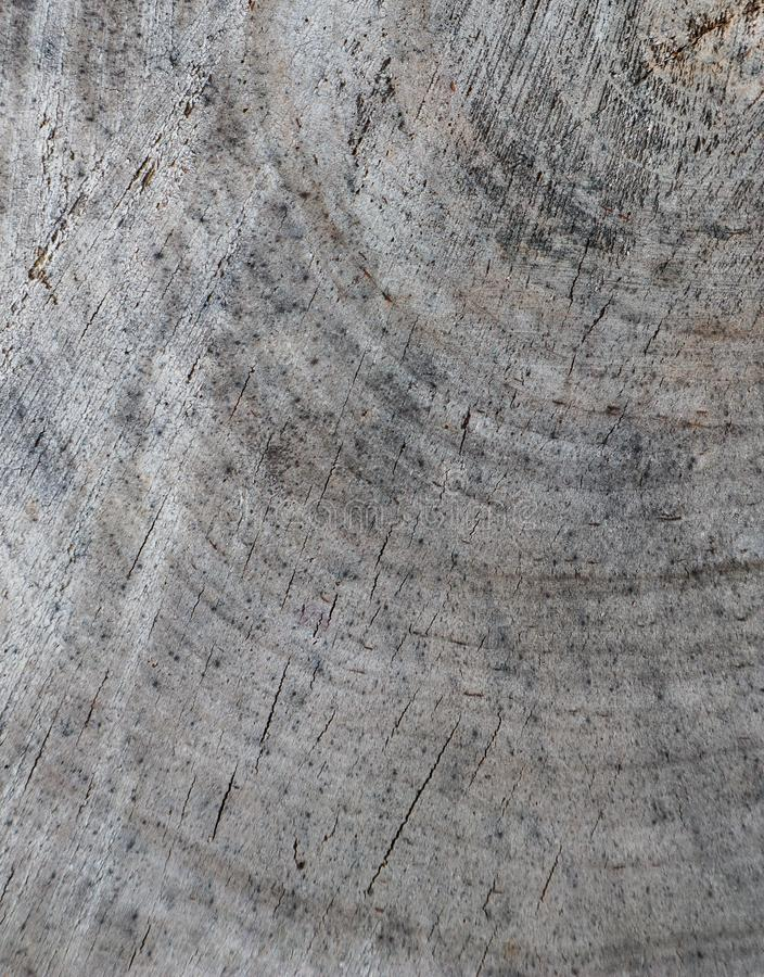 Fundo do seção transversal do tronco de árvore Textura abstrata dos anéis da madeira resistida velha com uma quebra fotografia de stock