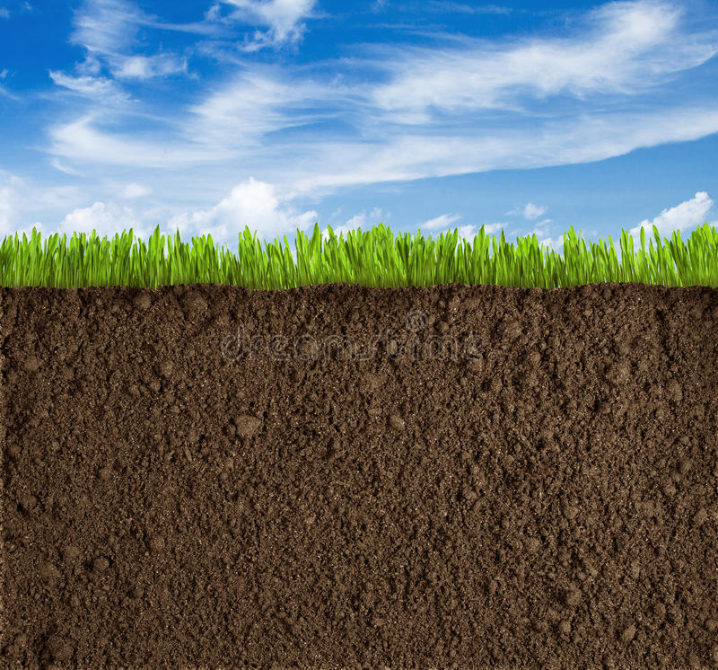 Fundo do solo, da grama e do céu fotos de stock royalty free