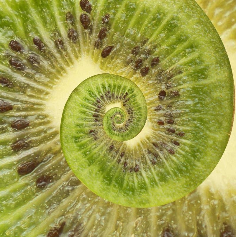 Fundo do sumário da espiral da infinidade do quivi foto de stock royalty free