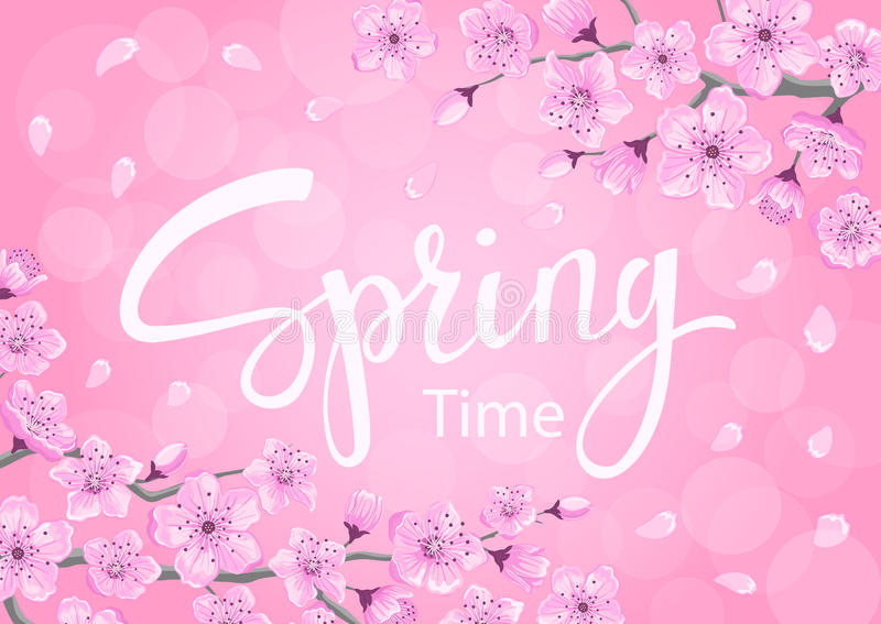 Fundo do tempo de mola com flores das flores de cerejeira ilustração stock