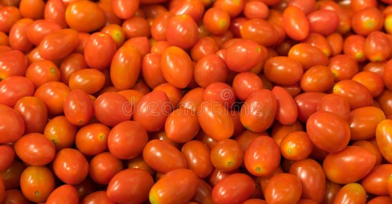 Fundo do tomate da uva vermelha, dois trajetos de grampeamento incluídos imagem de stock royalty free