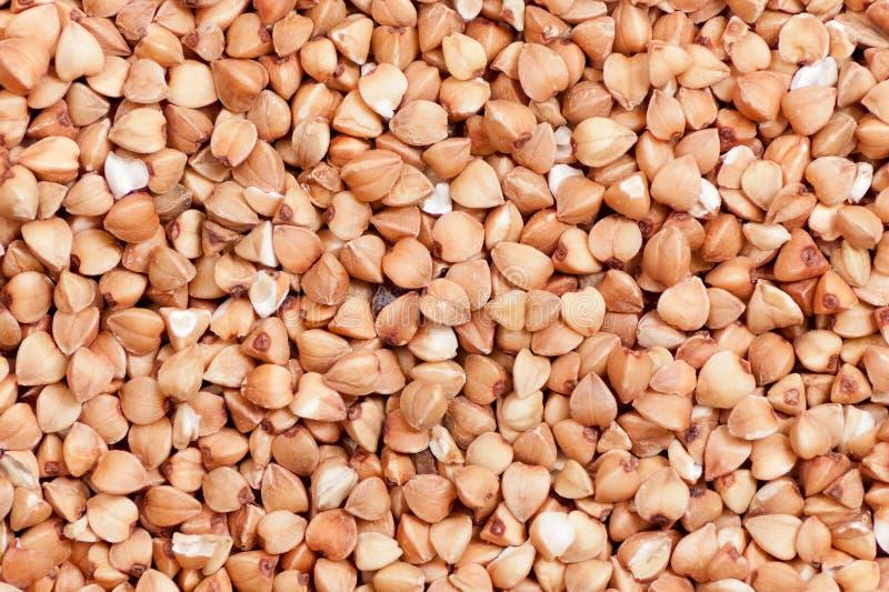 Fundo do trigo mourisco fotos de stock