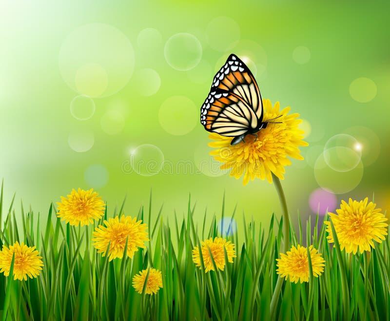 Fundo do verão com dentes-de-leão e uma borboleta. ilustração stock