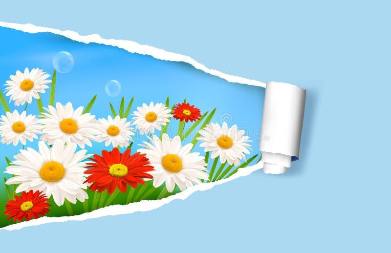 Fundo do verão com flores e papel rasgado ilustração stock