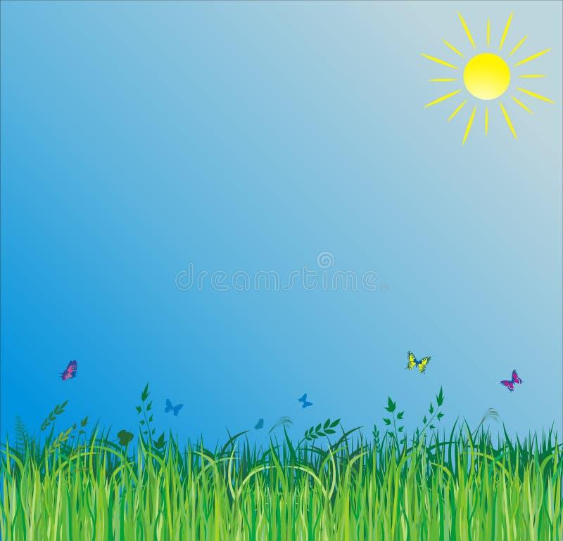 Fundo do verão com grama verde ilustração royalty free