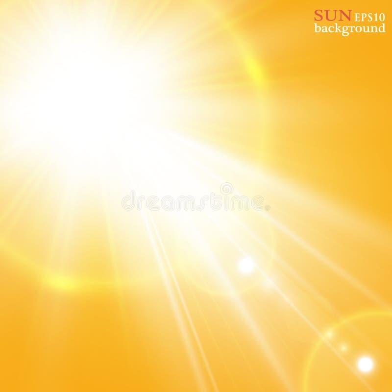 Fundo do verão com um estouro magnífico do sol do verão com alargamento da lente Espaço para seu texto ilustração royalty free
