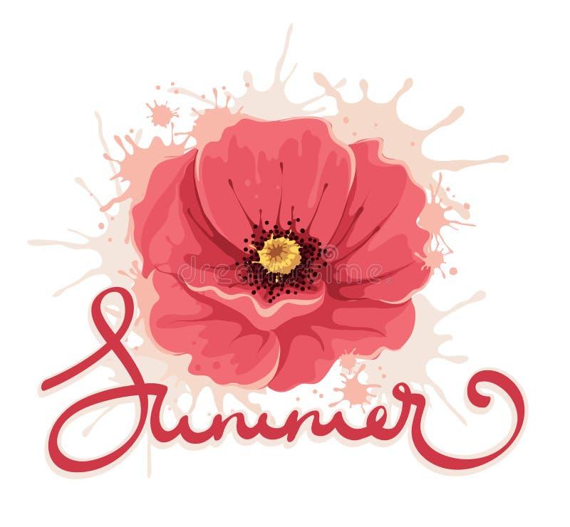 Fundo do verão -- flor da papoila ilustração royalty free