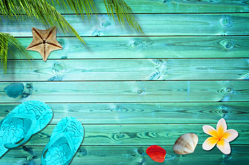 Fundo do verão, palmeiras, falhanços de aleta e shell do mar fotografia de stock