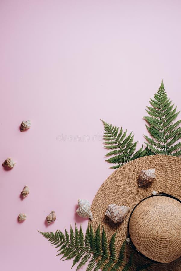 Fundo do ver?o Acessórios do viajante, ramos tropicais da folha da samambaia, chapéu e concha do mar no fundo cor-de-rosa Conceit fotos de stock royalty free
