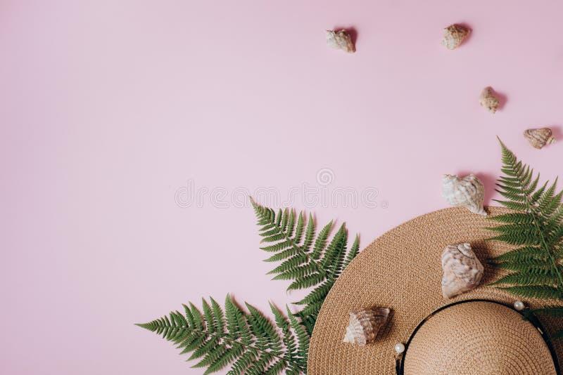 Fundo do ver?o Acessórios do viajante, ramos tropicais da folha da samambaia, chapéu e concha do mar no fundo cor-de-rosa Conceit foto de stock royalty free