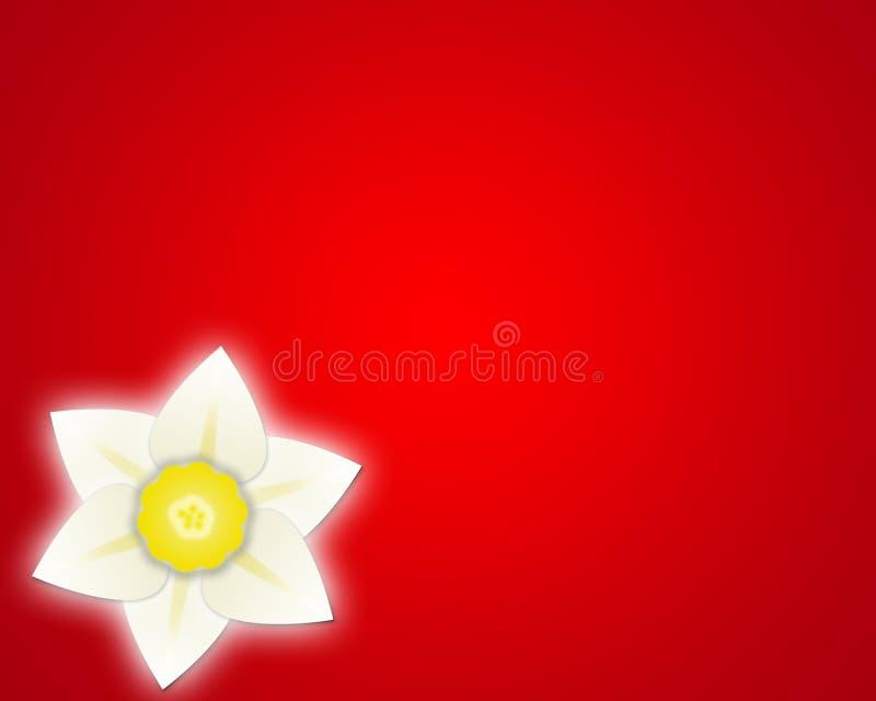 Fundo do vermelho do Daffodil ilustração royalty free