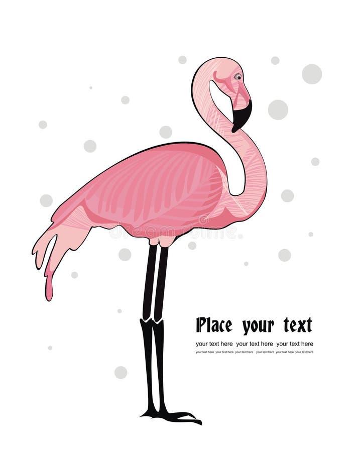 Fundo do vetor com flamingo ilustração royalty free