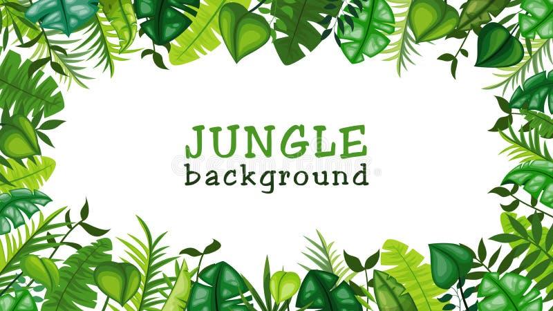 Fundo do vetor da selva ilustração stock