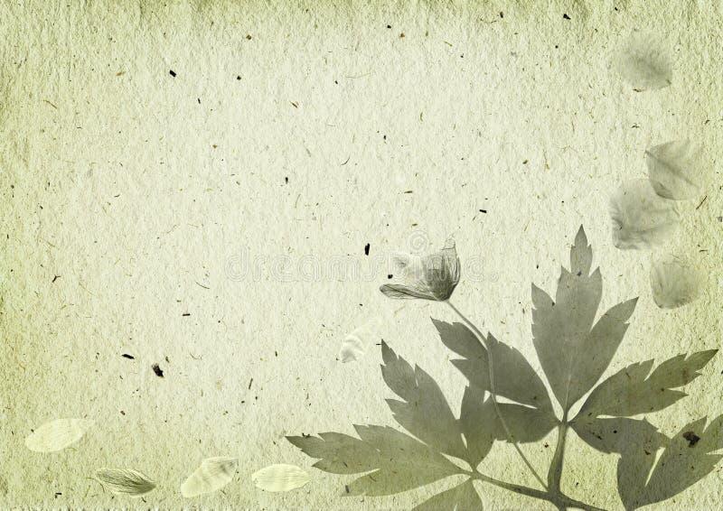 Fundo do vintage com elementos florais ilustração royalty free