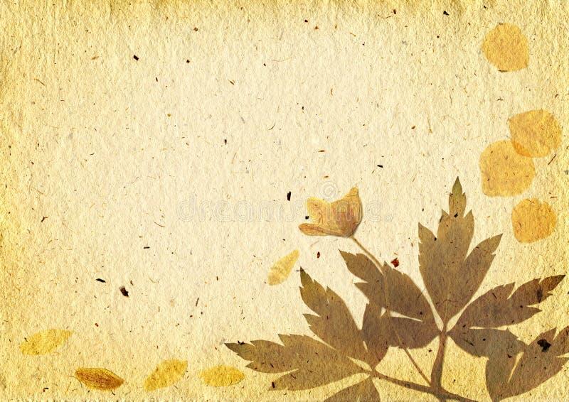 Fundo do vintage com elementos florais ilustração do vetor