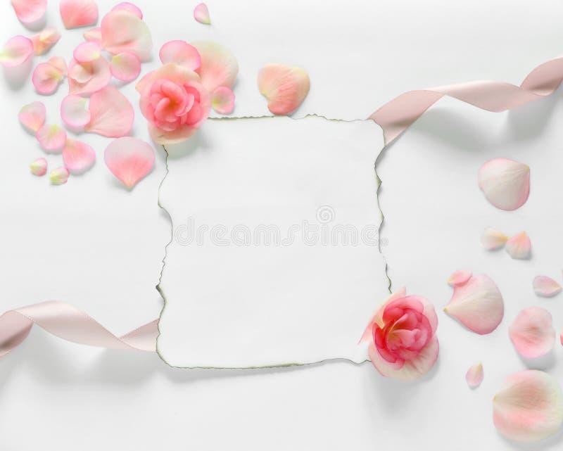 Fundo do vintage com papel-quadro e pétalas para felicitações imagem de stock royalty free