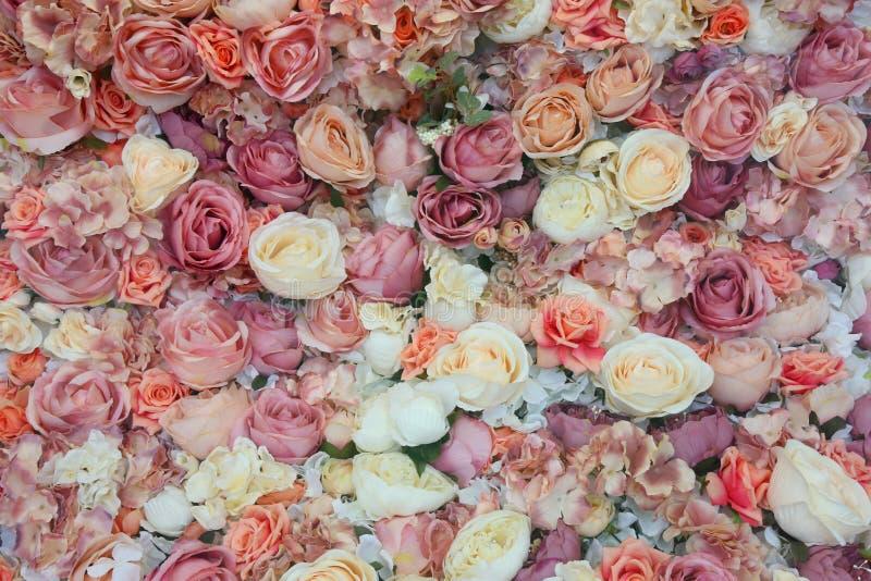 Fundo do vintage das rosas coloridas foto de stock royalty free