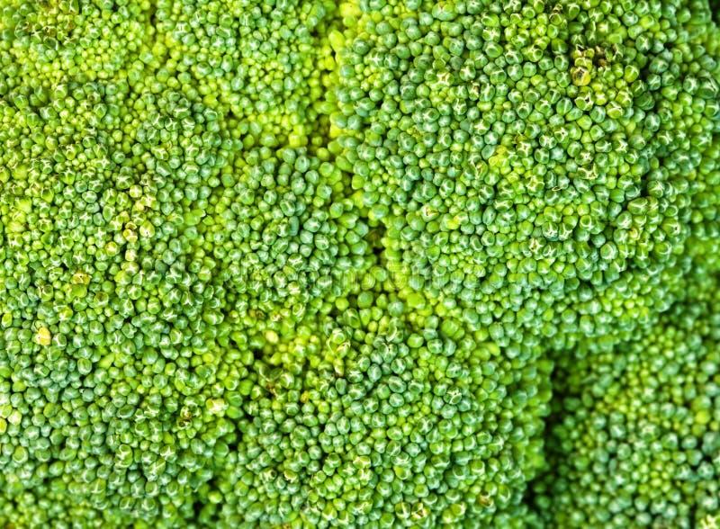 Fundo dos bróculos imagens de stock