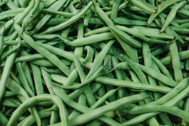 Fundo dos feijões verdes Produtos locais naturais no mercado da exploração agrícola Colheita Produtos sazonais Alimento vegetais imagem de stock royalty free