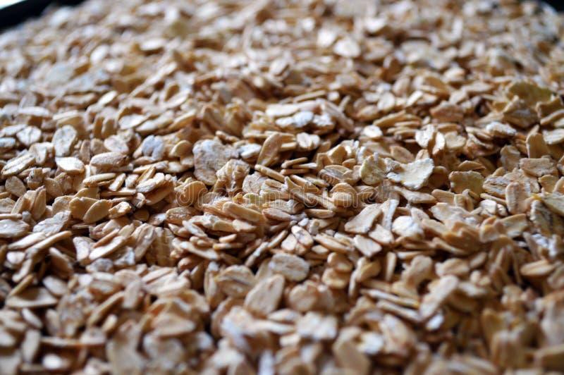 Fundo dos flackes da farinha de aveia ou da aveia Textura da farinha de aveia closeup fotografia de stock