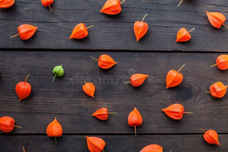Fundo dos frutos do physalis do outono, alimento exótico imagens de stock royalty free
