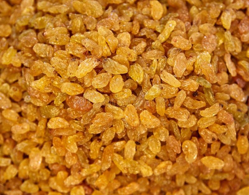 Fundo dos Raisins Sultanas amarelas Uva sem sementes secada dourada fotos de stock royalty free