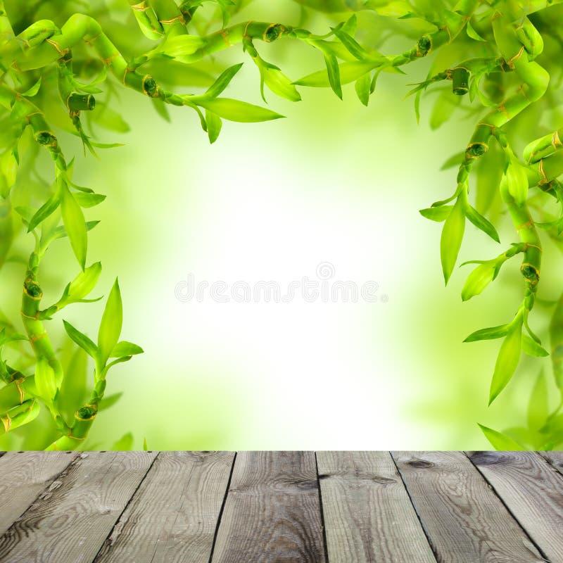 Fundo dos termas com bambu verde e a tabela de madeira fotos de stock